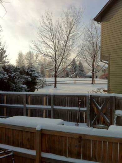 Christmas morning. It looks almost the same three days later.